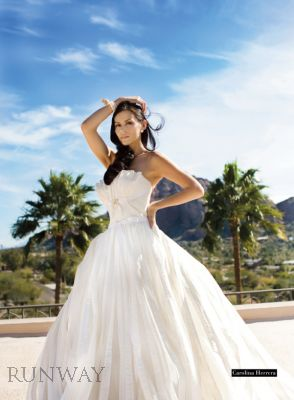 RW900+-+Spring+Bride+2009_Runway09Spring-HIGH-50.jpg.small